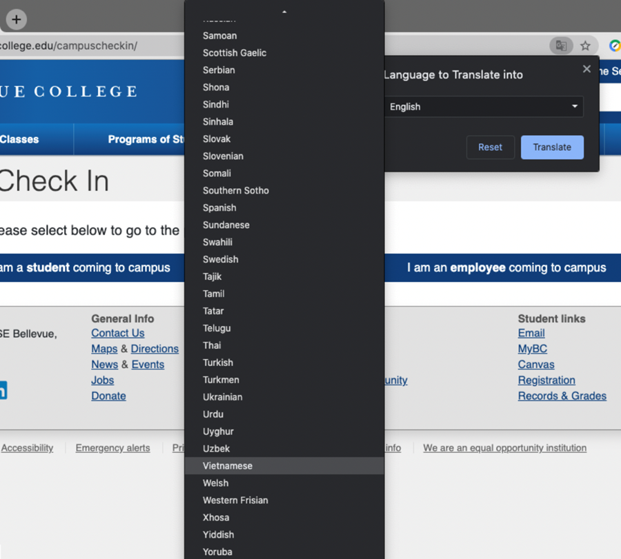 a screenshot of the menu of some of the languages available.